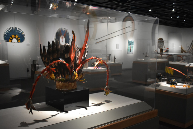Amazon Exhibit, October 2017
